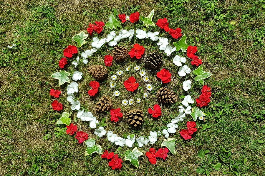 Red and white geraniums, pine cones and ivy leaves lowers arranged in a circular pattern to form aSummer Solstice Flower Mandala